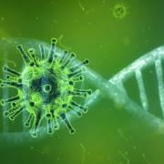 Eilmeldung-Coronavirus-2